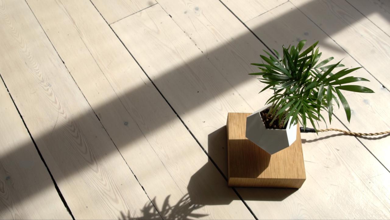 Lyfe_outdoors_wood_