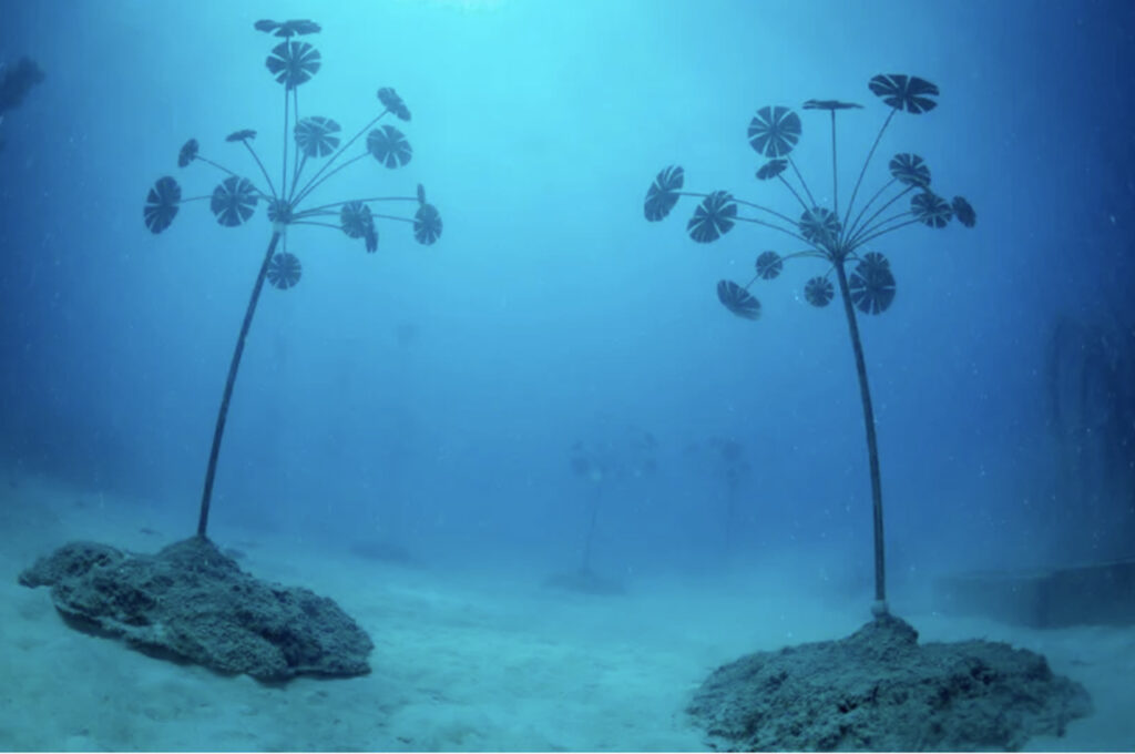 museum of underwater art (MOUA)