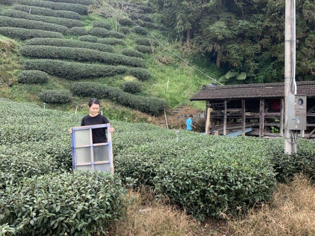 Tryngoal Tea House